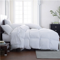 Vienna Medium Down Queen Comforter