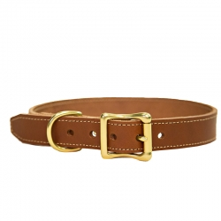 Medium Dog Collar