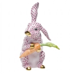 Raspberry Bunny with Carrot