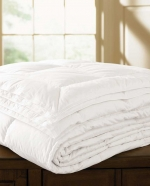 Arcadia Medium Fill Queen Duvet
